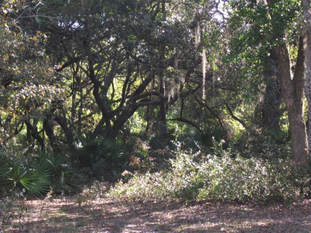 0 Mangels Dr, Interlachen, FL 32148 (MLS #985106) :: Florida Homes Realty & Mortgage