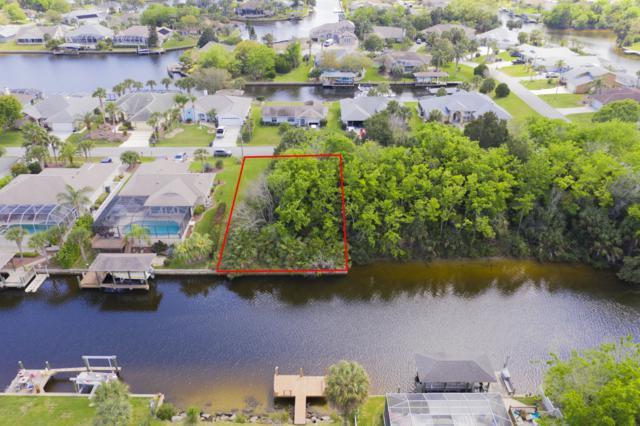 9 Coolidge Ct, Palm Coast, FL 32137 (MLS #985393) :: Oceanic Properties