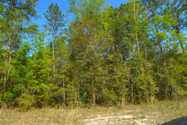 XXX Masters Rd, Middleburg, FL 32068 (MLS #987176) :: CrossView Realty