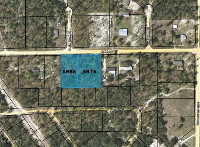 5975 Oak Leaf Rd, Keystone Heights, FL 32656 (MLS #987872) :: Young & Volen   Ponte Vedra Club Realty