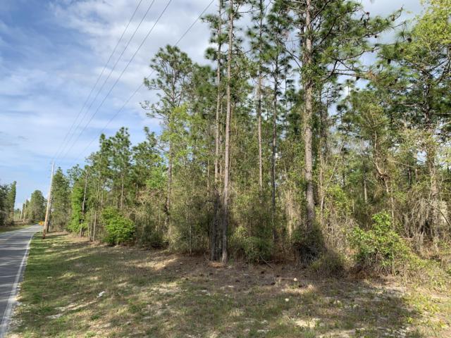 1200 Baden Powell Rd, Hawthorne, FL 32640 (MLS #988748) :: Jacksonville Realty & Financial Services, Inc.