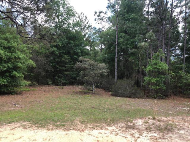 124 Slipper Way, Hawthorne, FL 32640 (MLS #989747) :: Young & Volen   Ponte Vedra Club Realty