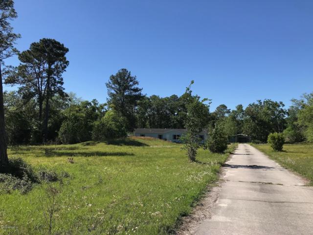2212 Mallard Rd, Middleburg, FL 32068 (MLS #990931) :: The Hanley Home Team