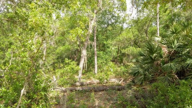 00 Wilson Dr, Interlachen, FL 32148 (MLS #992903) :: Florida Homes Realty & Mortgage