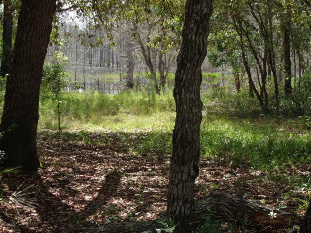 144 Pecan Ave, Interlachen, FL 32148 (MLS #993513) :: Florida Homes Realty & Mortgage