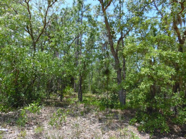 7592 Los Padres Ave, Keystone Heights, FL 32656 (MLS #995204) :: Florida Homes Realty & Mortgage