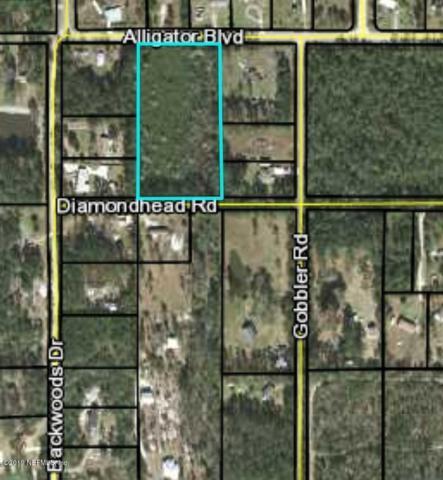 0 Diamondhead Rd, Middleburg, FL 32068 (MLS #995357) :: Memory Hopkins Real Estate