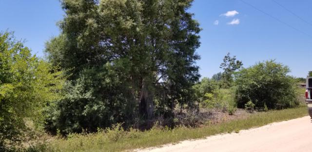 5881 Sequoia Rd, Keystone Heights, FL 32656 (MLS #996168) :: Memory Hopkins Real Estate