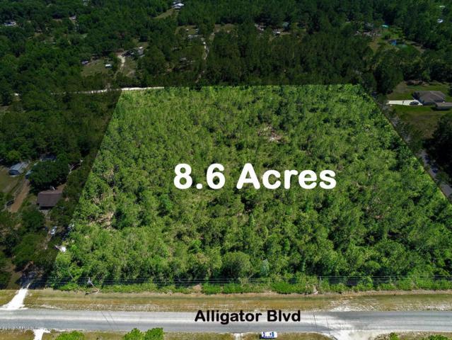 0 Alligator Blvd, Middleburg, FL 32068 (MLS #996817) :: Florida Homes Realty & Mortgage