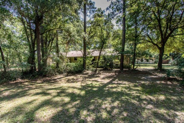 1623 Big Branch Rd, Middleburg, FL 32068 (MLS #997003) :: Florida Homes Realty & Mortgage