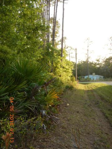 0 Jim Ave, Interlachen, FL 32148 (MLS #997579) :: The Hanley Home Team