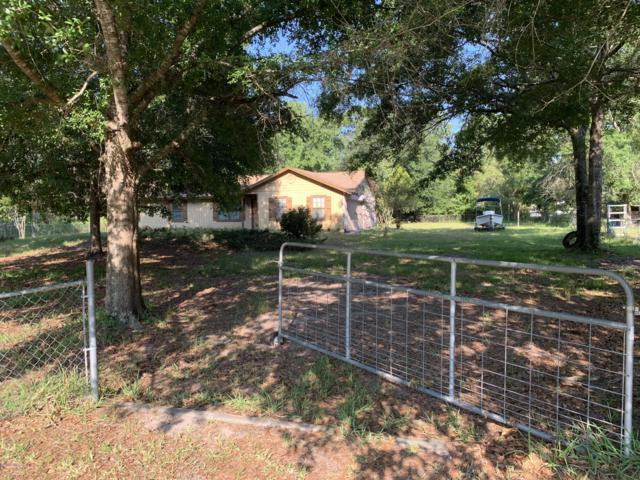 2288 Daisy St, Middleburg, FL 32068 (MLS #997951) :: The Hanley Home Team