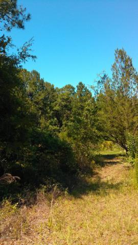 18 Ivy Ct, Middleburg, FL 32068 (MLS #999828) :: The Hanley Home Team