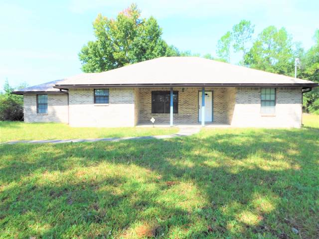 101 Mimosa Ave, Middleburg, FL 32068 (MLS #1017292) :: The Hanley Home Team