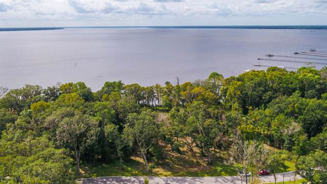 14230 River Story Dr, Jacksonville, FL 32223 (MLS #1022883) :: The Every Corner Team | RE/MAX Watermarke