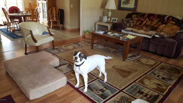 101 Roanoke Ave, Satsuma, FL 32189 (MLS #1031406) :: Berkshire Hathaway HomeServices Chaplin Williams Realty