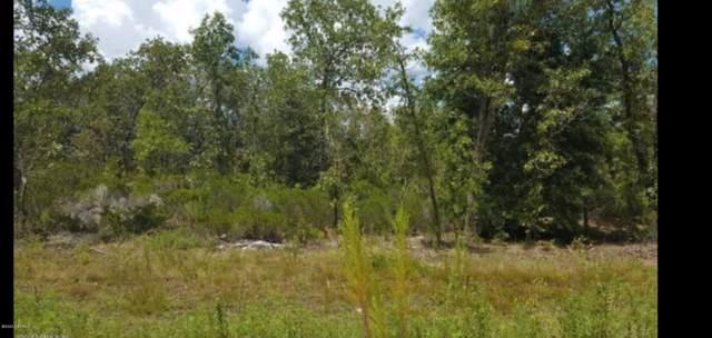 156 1ST Ave, Interlachen, FL 32148 (MLS #1034650) :: Ponte Vedra Club Realty