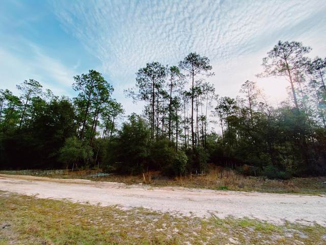 00 Rollins Rd, Interlachen, FL 32148 (MLS #1039316) :: 97Park