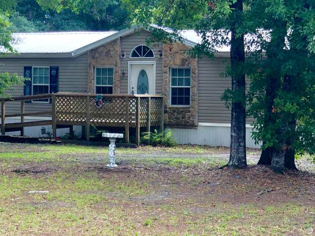 10055 Light Ave, Hastings, FL 32145 (MLS #1057683) :: Berkshire Hathaway HomeServices Chaplin Williams Realty