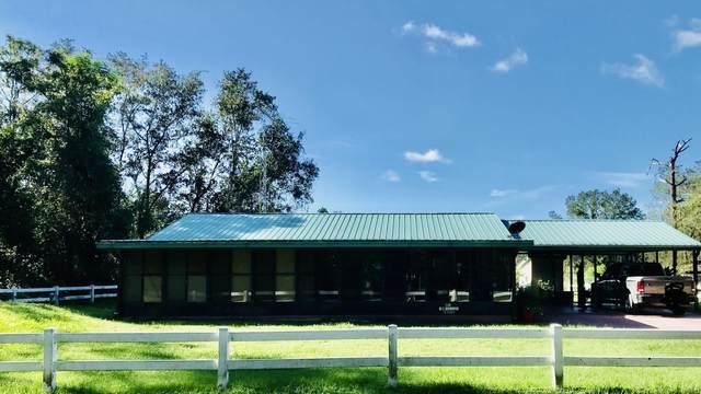 115 Appaloosa Dr, Interlachen, FL 32148 (MLS #1073777) :: The Hanley Home Team
