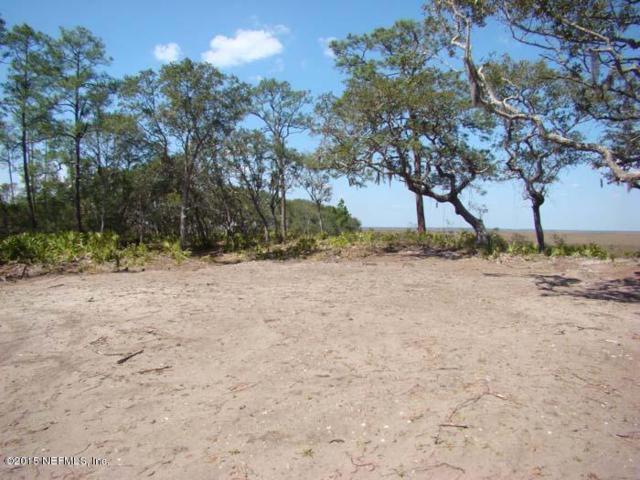 LOT 1 Sound Point Ct, Fernandina Beach, FL 32034 (MLS #800042) :: RE/MAX WaterMarke