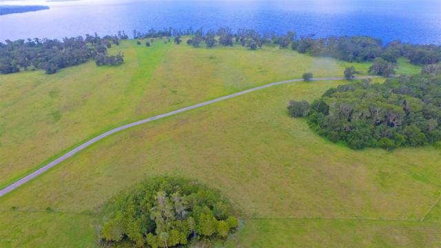 15 Andalusia Trl, Bunnell, FL 32110 (MLS #821353) :: EXIT Real Estate Gallery