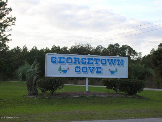 227 Dogwood Ave, Georgetown, FL 32139 (MLS #833797) :: EXIT Real Estate Gallery