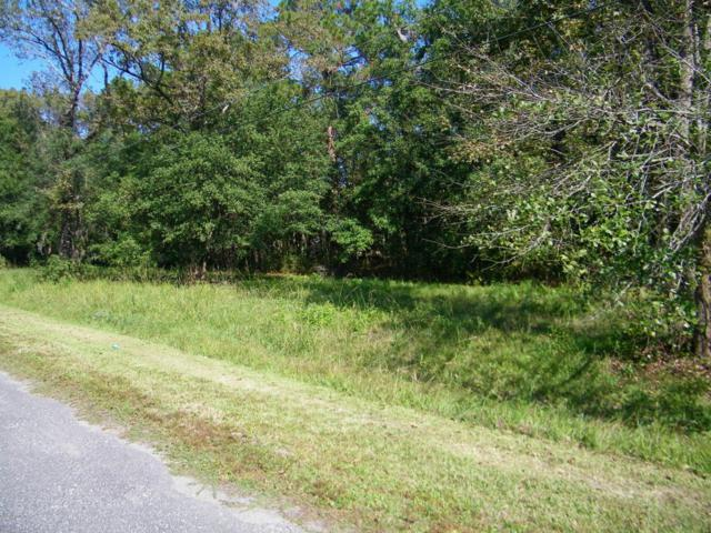LOT 0150 Oak Trail Ln, Jacksonville, FL 32209 (MLS #855616) :: St. Augustine Realty