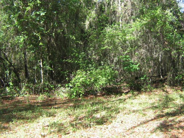5023 Heskett Ln, Keystone Heights, FL 32656 (MLS #875431) :: The Hanley Home Team