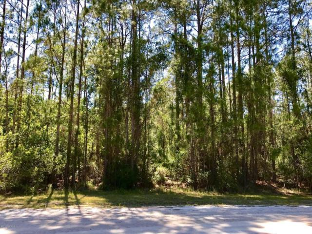123 Pine Cone Dr, Georgetown, FL 32139 (MLS #880876) :: EXIT Real Estate Gallery