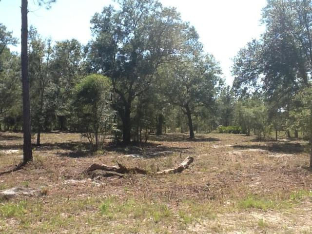LOT 71 Deacon Dr, Bryceville, FL 32009 (MLS #889491) :: EXIT Real Estate Gallery