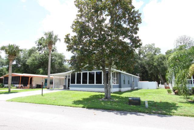 139 Pinelake Dr, Satsuma, FL 32189 (MLS #896689) :: EXIT Real Estate Gallery