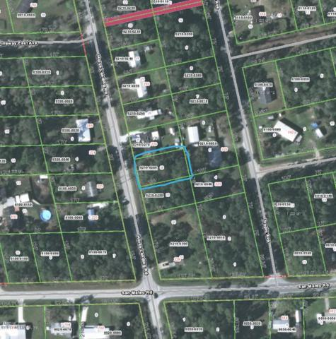 222 Horse Landing Rd, Satsuma, FL 32189 (MLS #906804) :: 97Park