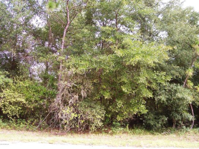 0000 Micheal Ave, Interlachen, FL 32148 (MLS #911695) :: Sieva Realty