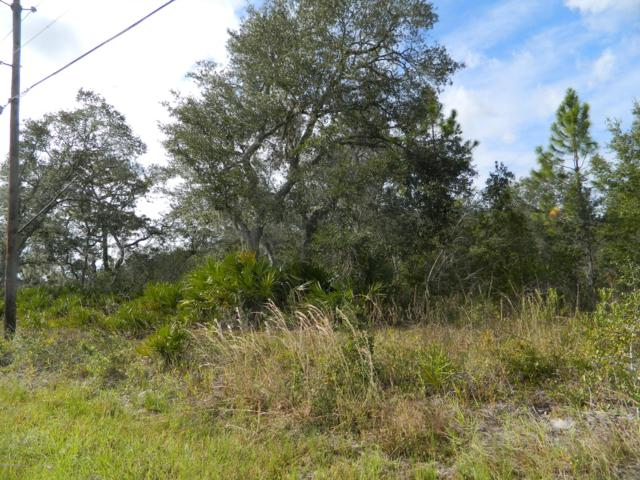 00 Hwy 17, Satsuma, FL 32189 (MLS #917004) :: CrossView Realty