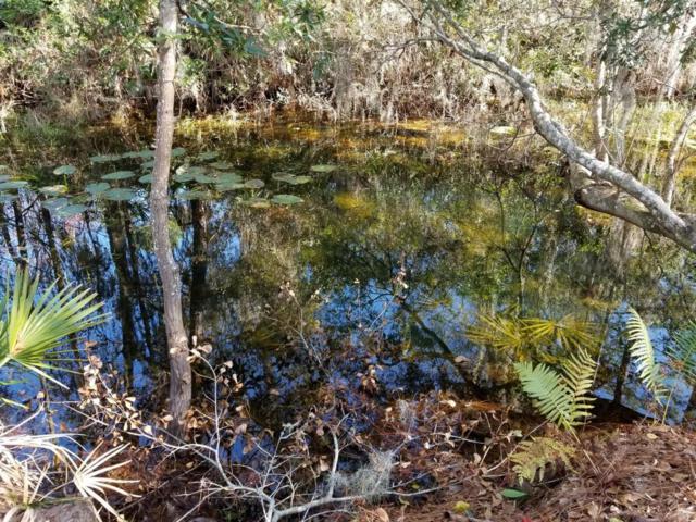 114 Flora Ter, Florahome, FL 32140 (MLS #922023) :: RE/MAX WaterMarke
