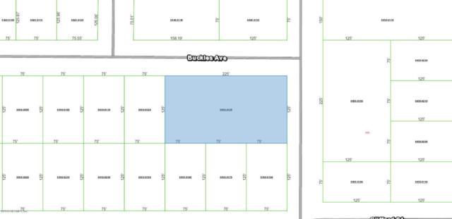 0 Buckles Ave, Interlachen, FL 32148 (MLS #940302) :: Memory Hopkins Real Estate