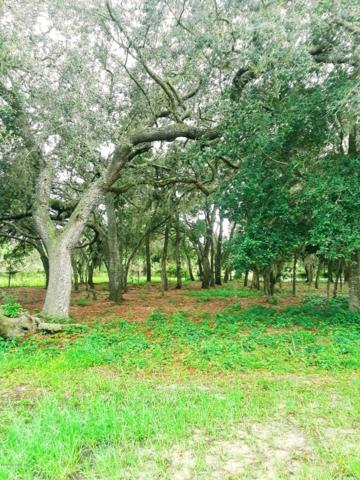 238 Oak Ridge Dr, Welaka, FL 32193 (MLS #941893) :: Berkshire Hathaway HomeServices Chaplin Williams Realty