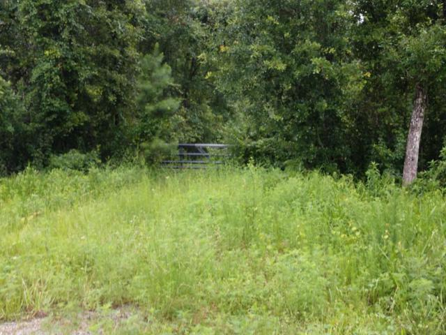 3260 State Road 21, Middleburg, FL 32068 (MLS #942378) :: EXIT Real Estate Gallery