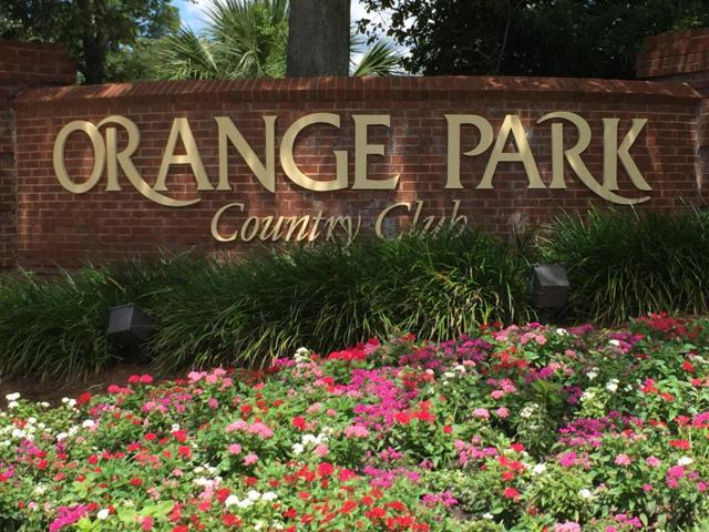 317 Glenlyon Dr, Orange Park, FL 32073 (MLS #952059) :: EXIT Real Estate Gallery