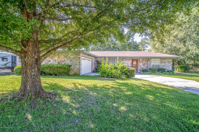 420 Raggedy Point Ct, Orange Park, FL 32003 (MLS #957641) :: EXIT Real Estate Gallery