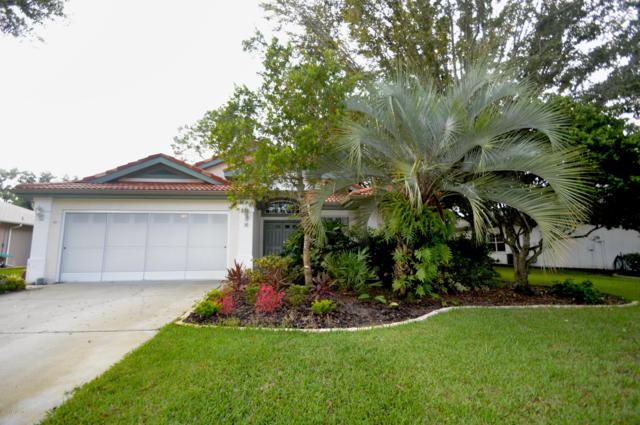 4 Saw Mill Ct, Palm Coast, FL 32164 (MLS #957809) :: Sieva Realty