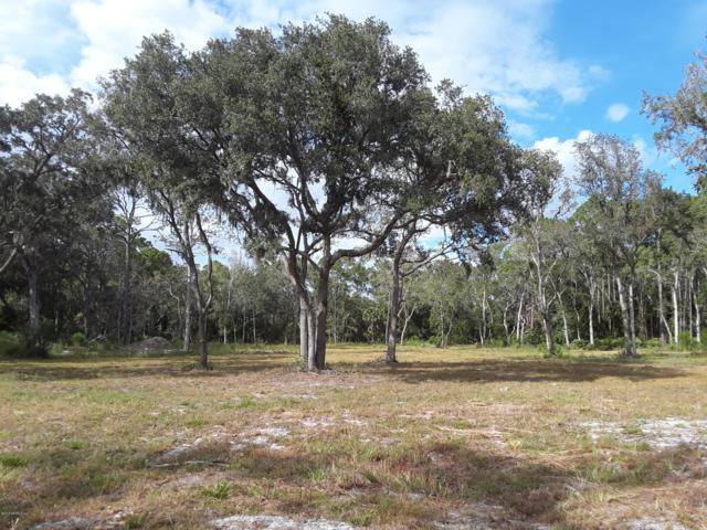 0 Cr 207 A, East Palatka, FL 32131 (MLS #958336) :: EXIT Real Estate Gallery