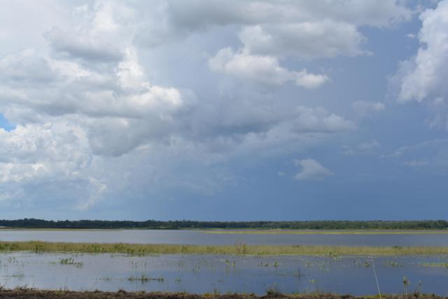 8860 Shores Pl, Melrose, FL 32666 (MLS #958441) :: Ponte Vedra Club Realty | Kathleen Floryan