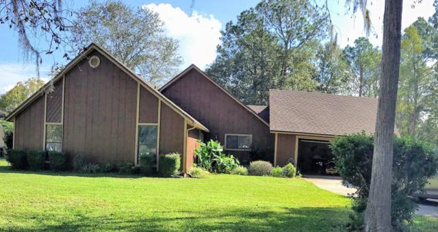 1131 Cactus Cut Rd, Middleburg, FL 32068 (MLS #965657) :: Florida Homes Realty & Mortgage