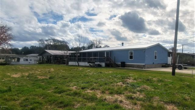 58 Carefree Dr, Welaka, FL 32189 (MLS #970249) :: The Hanley Home Team