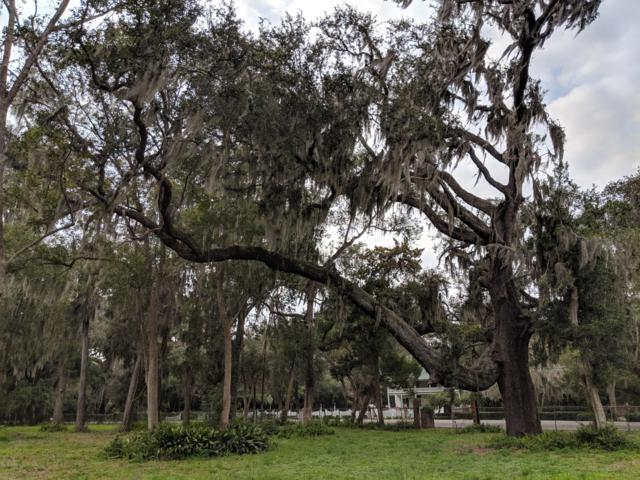 12511 Mandarin Rd, Jacksonville, FL 32223 (MLS #977997) :: Ponte Vedra Club Realty | Kathleen Floryan