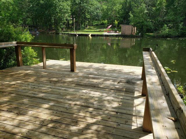 909 Lake Asbury Dr, GREEN COVE SPRINGS, FL 32043 (MLS #989204) :: The Edge Group at Keller Williams