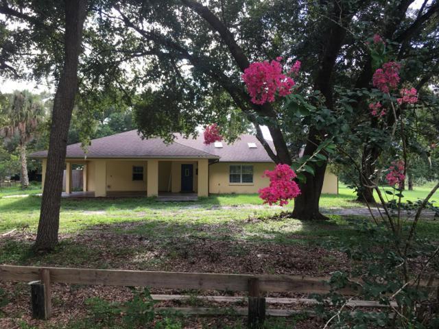3300 SE 183rd Avenue Rd SE, Oklawaha, FL 32179 (MLS #1007855) :: The Hanley Home Team