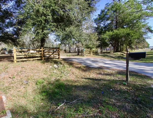 3474 Trail Ridge Rd, Middleburg, FL 32068 (MLS #1031133) :: Ponte Vedra Club Realty